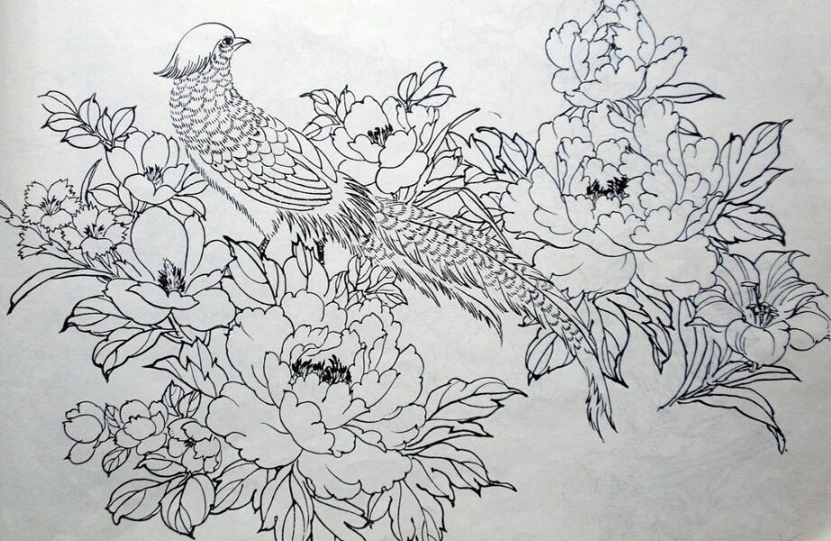 绘画白描手法案例