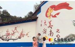 邵阳90后小伙将墙绘画满大街小巷